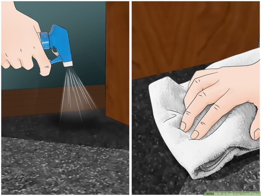 CARPET IMAGE CLEANING